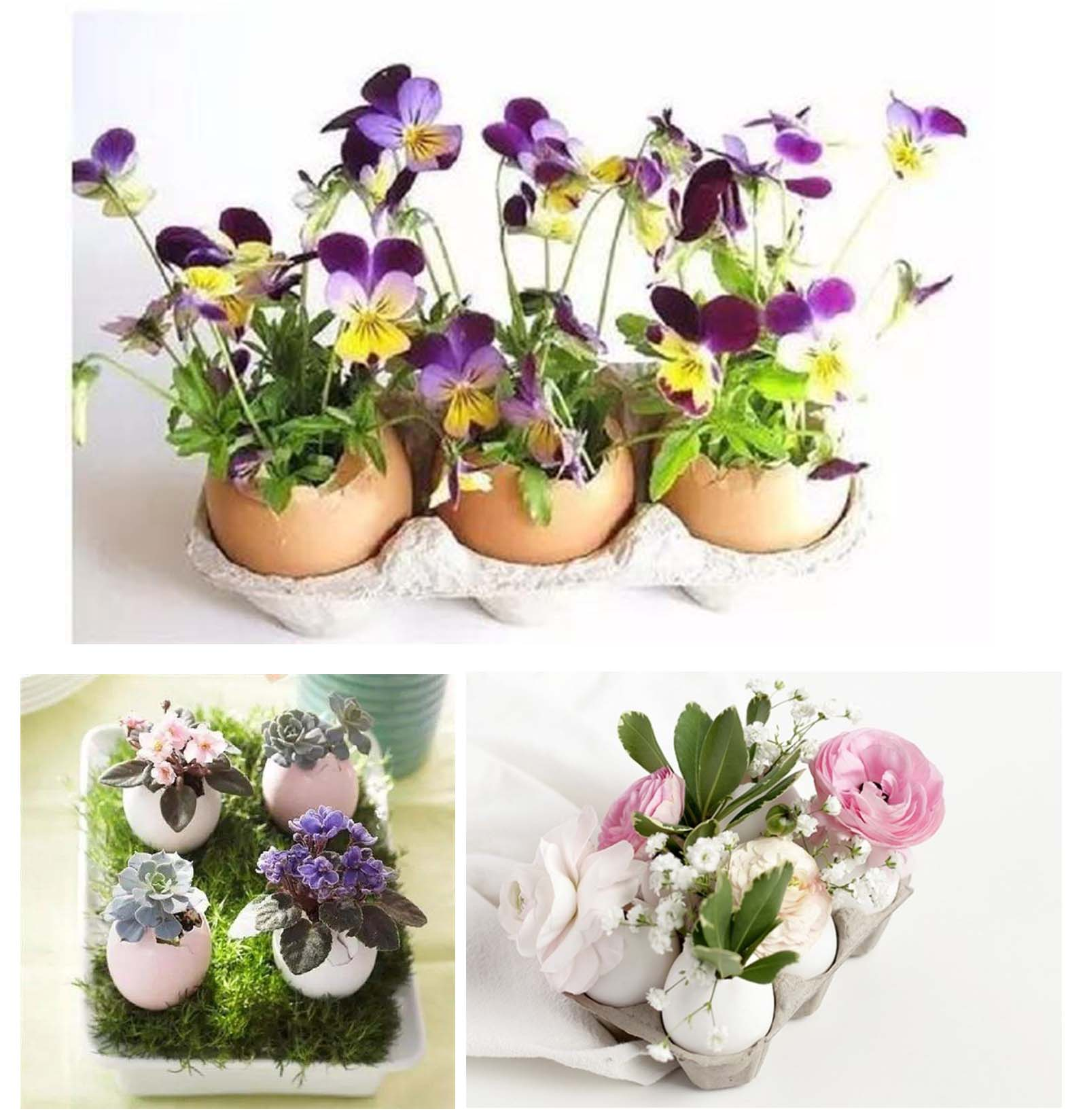 Create a colourful Easter egg garden by making more egg planters filled with different plants!
